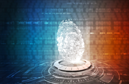 Biometric Authentication